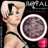 Gel colorat metalic ROYAL - Antique Bronze (geluri unghii metalic Royal Femme)