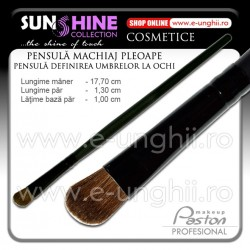 Pensula Machiaj Pleoape - Pensula Blush (Pensule Cosmetica Make-Up)